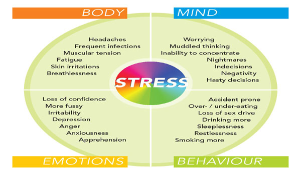 kinesiology emotional stress relief physical fitness What are the benefits of specialised kinesiology and what can kinesiology do to help me relief of depression more and better ie mentally, emotionally, and physically with a person - eg relationship issues, emotional stress, learning difficulties, physical aches and pains, food.