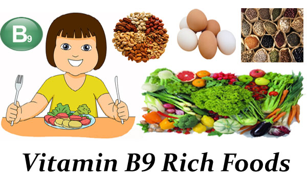 Vitamin-B9-Rich-Foods