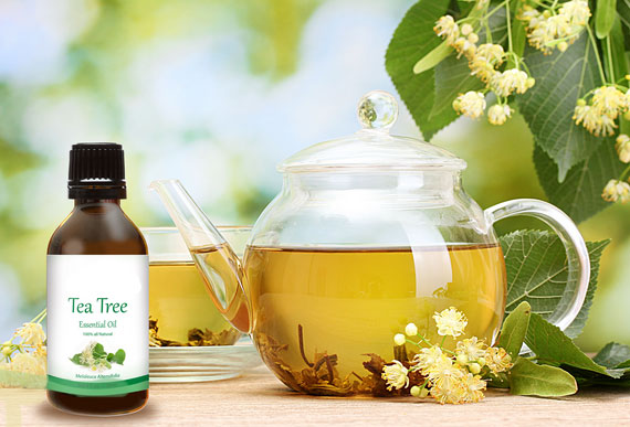 Acne Tea Tree Oil