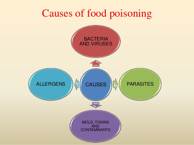 Main Causes Of Food Poisoning