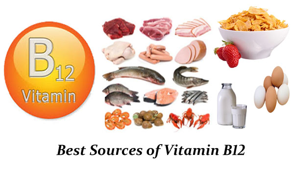 Best Sources of Vitamin B12