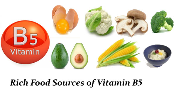 Rich Food Sources of Vitamin B5