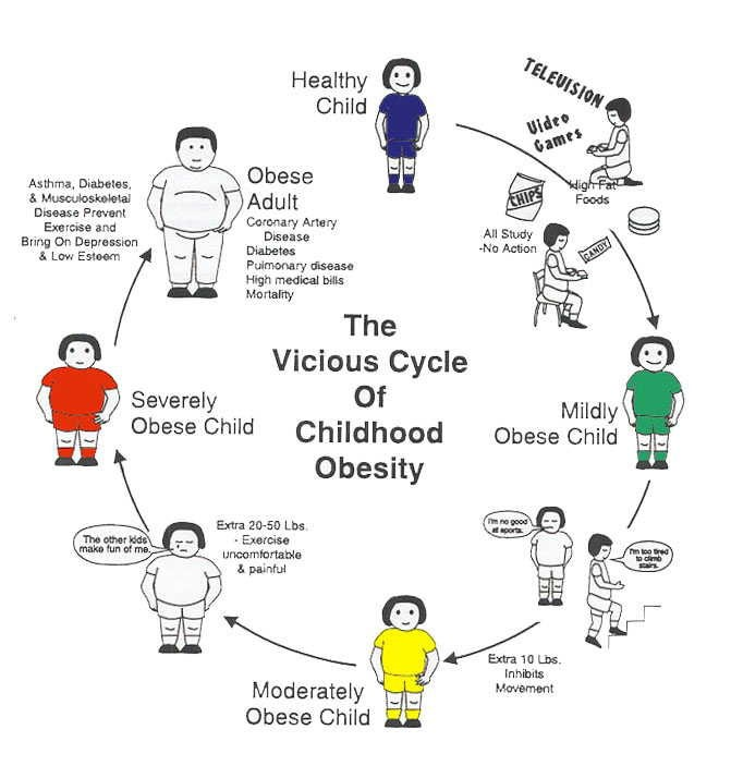 Chilhood Obesity Cycle