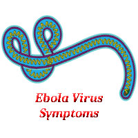 What are the Signs & Symptoms of Ebola Virus – Ebola Virus Symptoms
