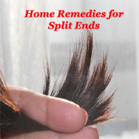 Top 8 Natural Home Remedies for Split Ends & Frizzy hair – Best Treatment for damaged hair