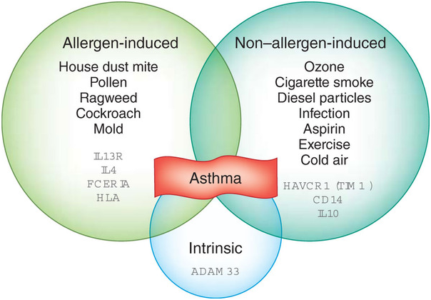 Treatment of allergic asthma