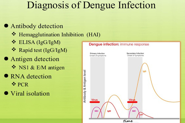 Home treatment for dengue fever