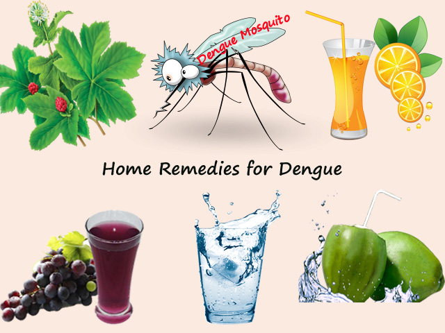 Home Remedies for Dengue – Cure for dengue fever