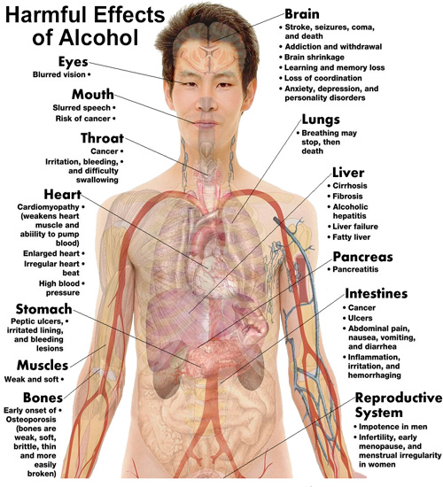 Effects of Alcohol On Health
