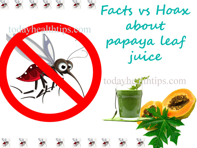 Dengue Treatment with Papaya Leaves Juice
