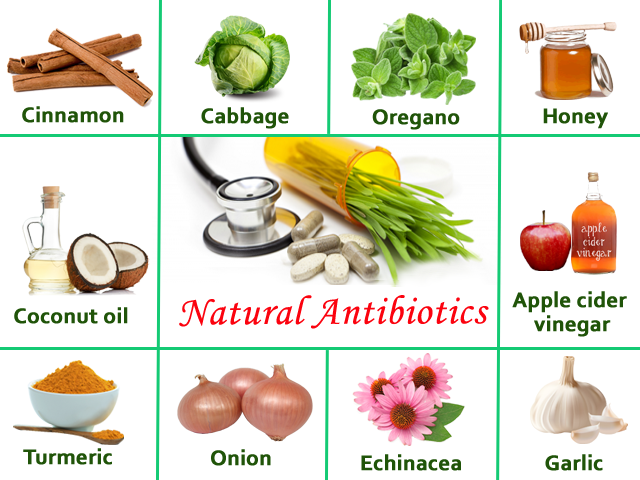 Natural Antibiotic foods